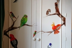 Wardrobe door painted with South Amercan birds