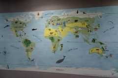 World map mural