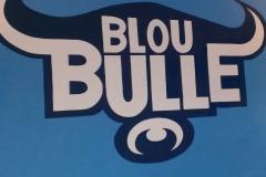 Blue Bulls sign